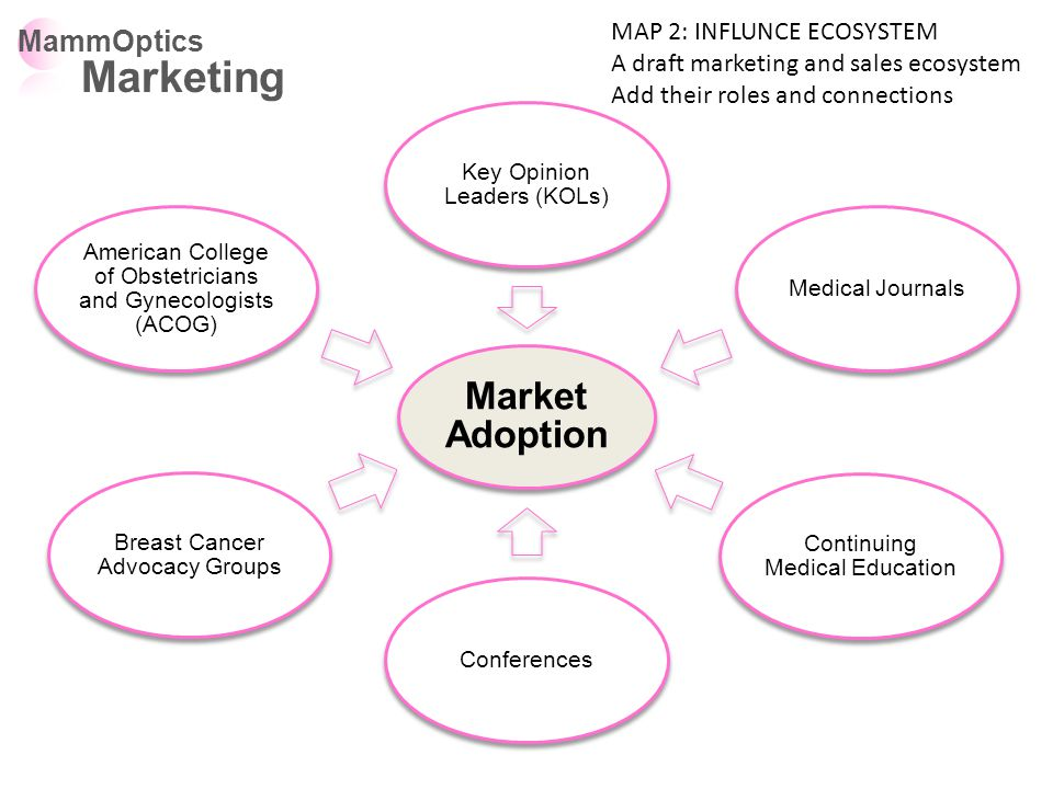 Market Adoption Key Opinion Leaders (KOLs) Medical Journals Continuing Medical Education Conferences Breast Cancer Advocacy Groups American College of Obstetricians and Gynecologists (ACOG) MammOptics Marketing MAP 2: INFLUNCE ECOSYSTEM A draft marketing and sales ecosystem Add their roles and connections