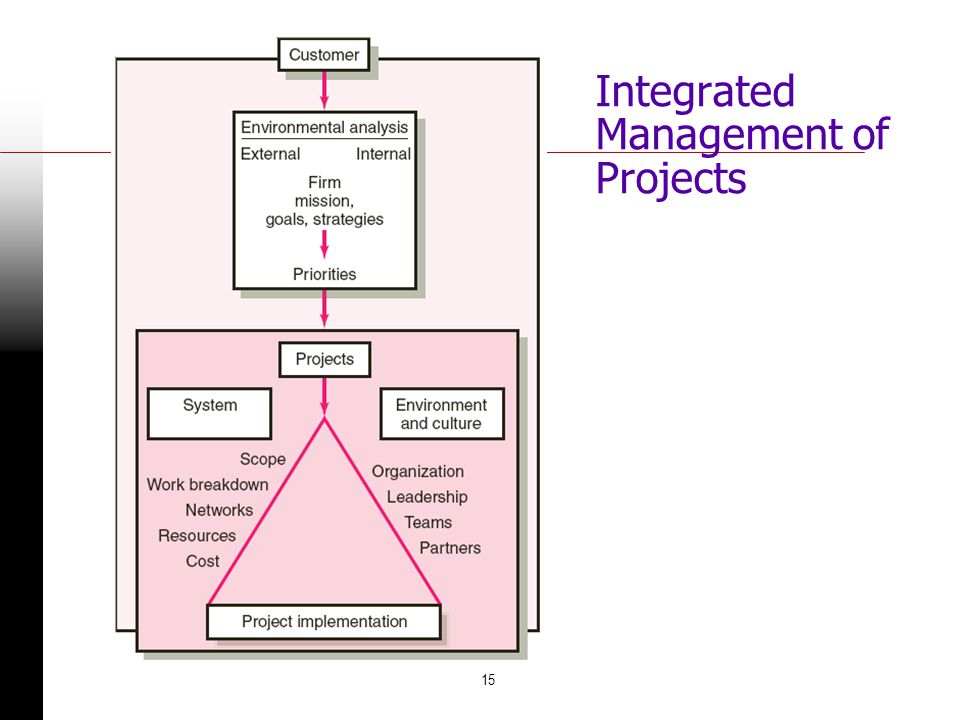 15 Integrated Management of Projects FIGURE 1.2