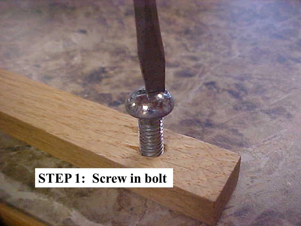 STEP 1: Screw in bolt