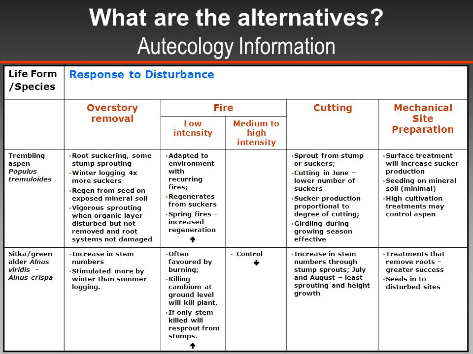 What are the alternatives.