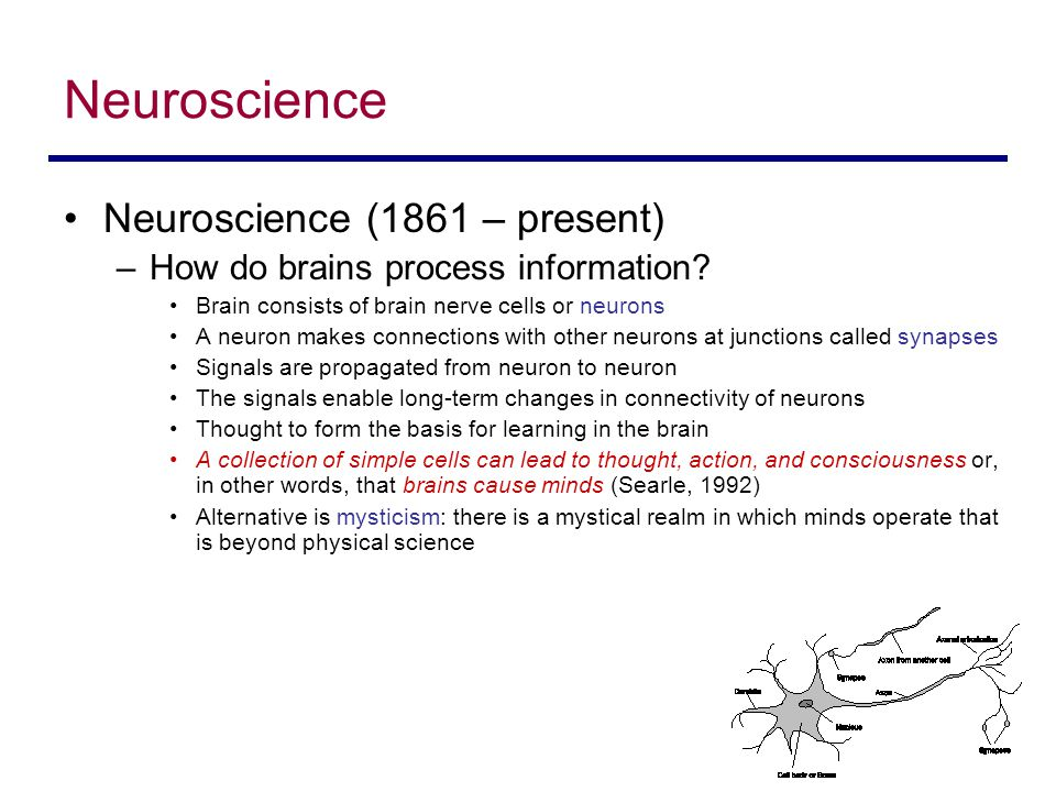 Neuroscience Neuroscience (1861 – present) –How do brains process information.