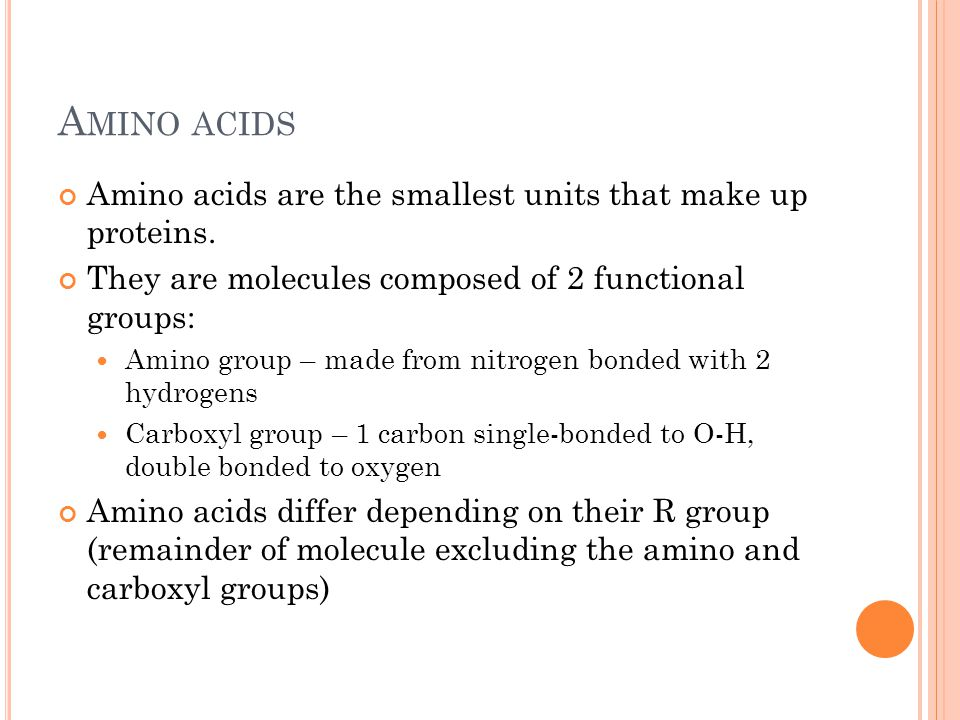 A MINO A CIDS Amino acids help determine the properties of a protein 20 different amino acids; about 20 different types of R groups commonly found in proteins.