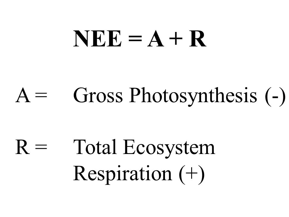 NEE = A + R A = Gross Photosynthesis (-) R = Total Ecosystem Respiration (+)