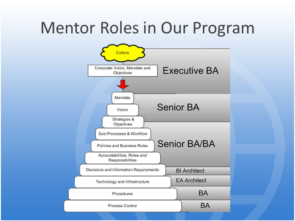 Mentor Roles in Our Program