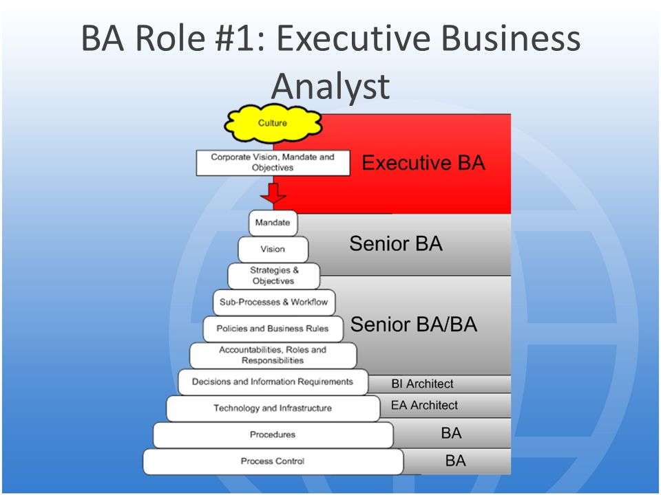 BA Role #1: Executive Business Analyst