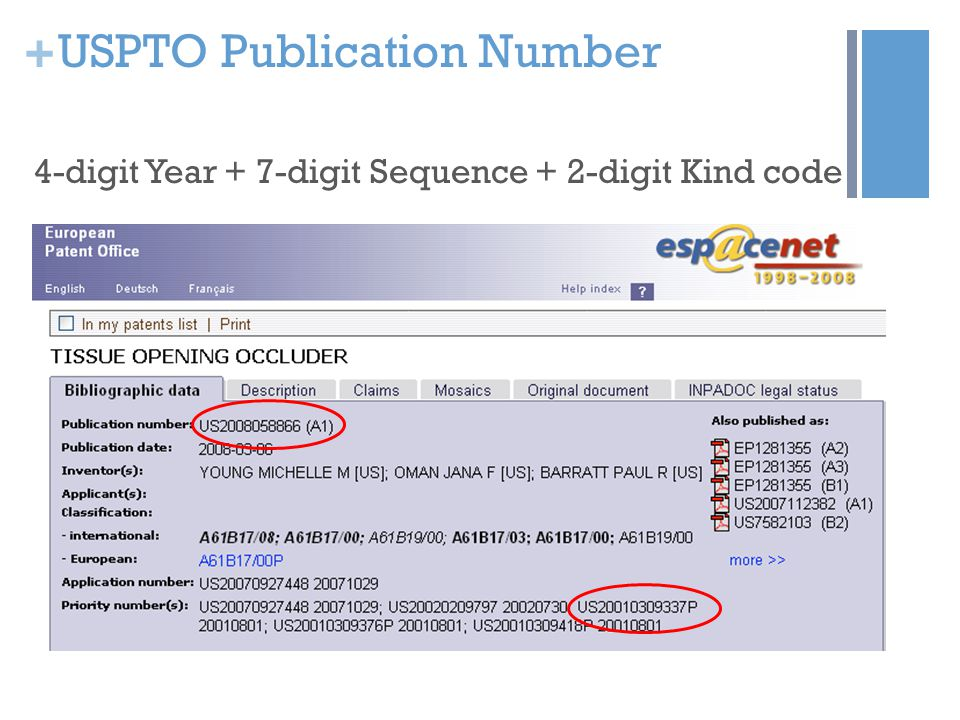 + USPTO Publication Number 4-digit Year + 7-digit Sequence + 2-digit Kind code