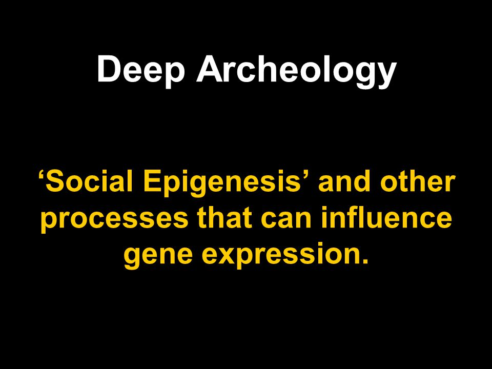 Deep Archeology 'Social Epigenesis' and other processes that can influence gene expression.