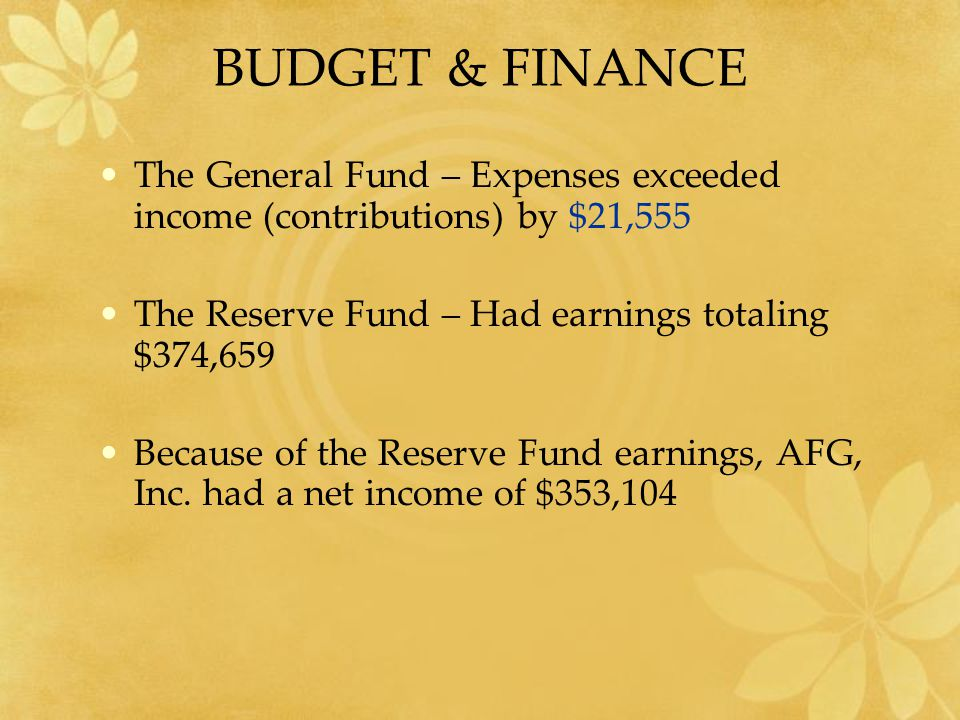 BUDGET & FINANCE The General Fund – Expenses exceeded income (contributions) by $21,555 The Reserve Fund – Had earnings totaling $374,659 Because of the Reserve Fund earnings, AFG, Inc.