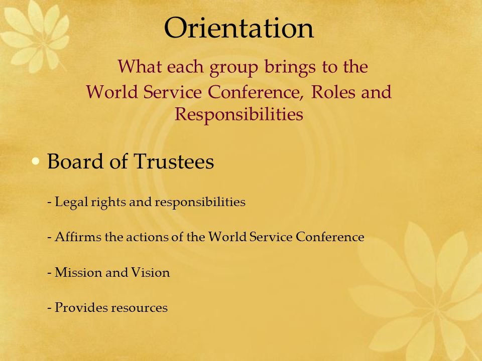 Orientation What each group brings to the World Service Conference, Roles and Responsibilities Delegates - Voice and Input -Communicate issues - Gather information -Act as a Conduit