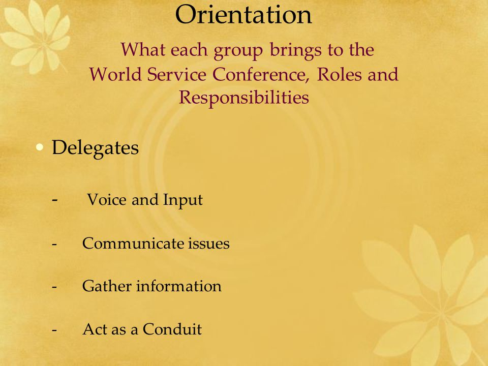 Orientation What each group brings to the World Service Conference, Roles and Responsibilities Delegates - Voice and Input -Communicate issues - Gathe