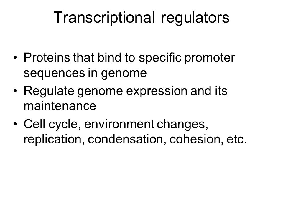 Transcriptional regulators Proteins that bind to specific promoter sequences in genome Regulate genome expression and its maintenance Cell cycle, environment changes, replication, condensation, cohesion, etc.