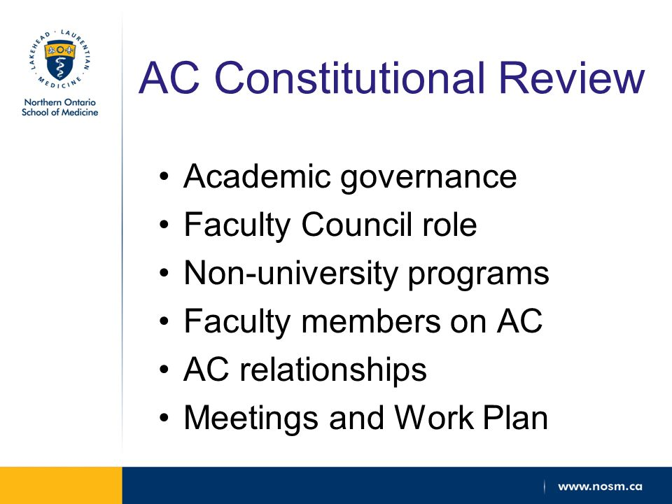 AC Constitutional Review Academic governance Faculty Council role Non-university programs Faculty members on AC AC relationships Meetings and Work Plan