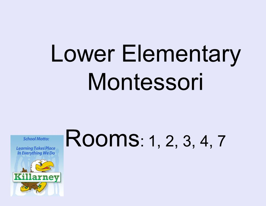Lower Elementary Montessori Rooms : 1, 2, 3, 4, 7
