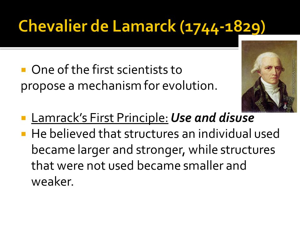  One of the first scientists to propose a mechanism for evolution.