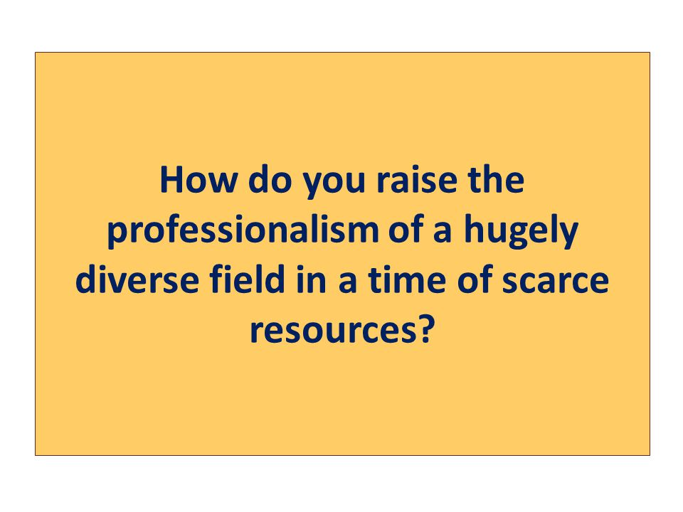 How do you raise the professionalism of a hugely diverse field in a time of scarce resources