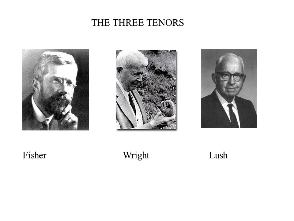 THE THREE TENORS Fisher Wright Lush