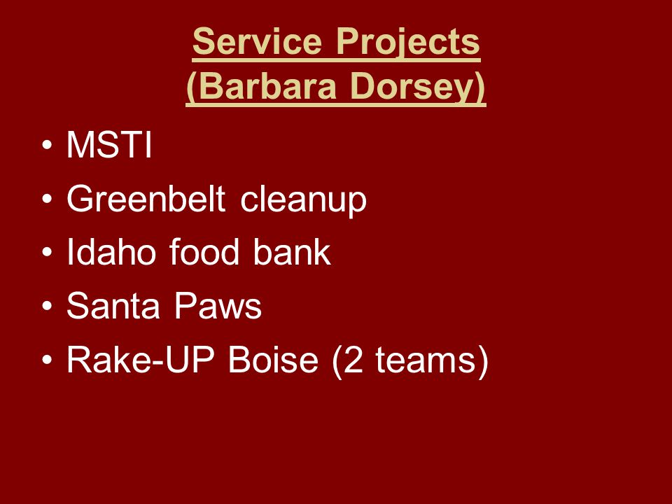 Service Projects (Barbara Dorsey) MSTI Greenbelt cleanup Idaho food bank Santa Paws Rake-UP Boise (2 teams)
