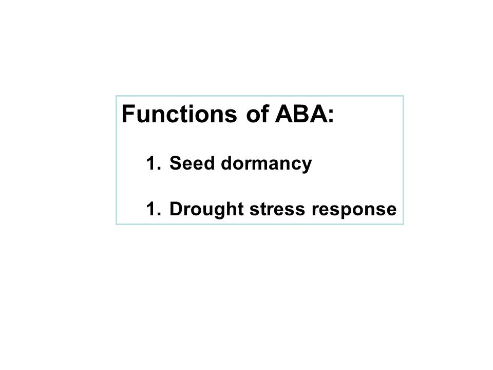 Functions of ABA: 1. Seed dormancy 1. Drought stress response