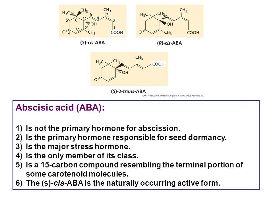 Abscisic acid (ABA): 1)Is not the primary hormone for abscission. 2)Is the primary hormone responsible for seed dormancy. 3)Is the major stress hormon