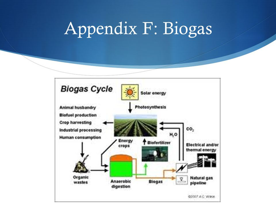 Appendix F: Biogas