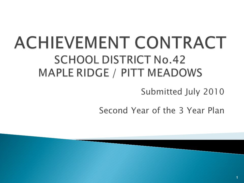 Submitted July 2010 Second Year of the 3 Year Plan 1