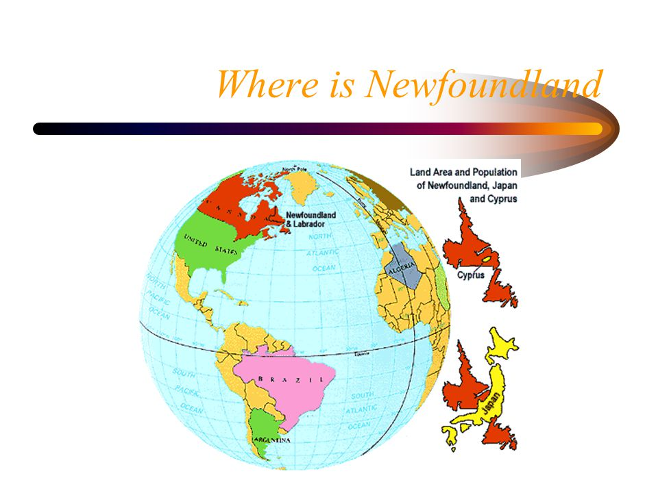 Where is Newfoundland