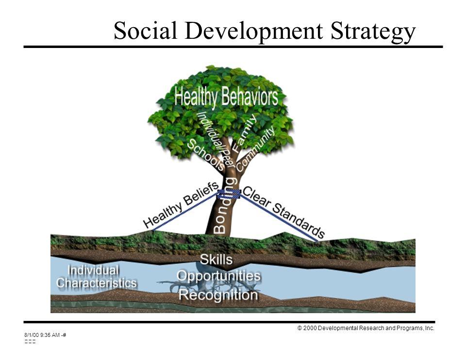 April 2007 Social Development Strategy © 2000 Developmental Research and Programs, Inc.