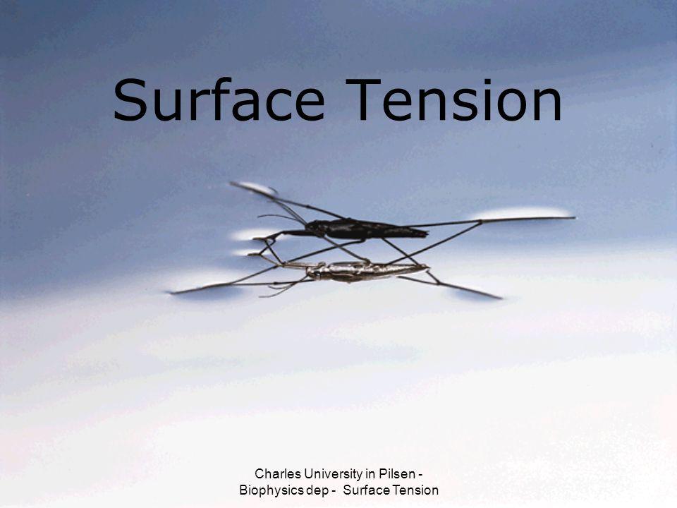 Charles University in Pilsen - Biophysics dep - Surface Tension Surface Tension