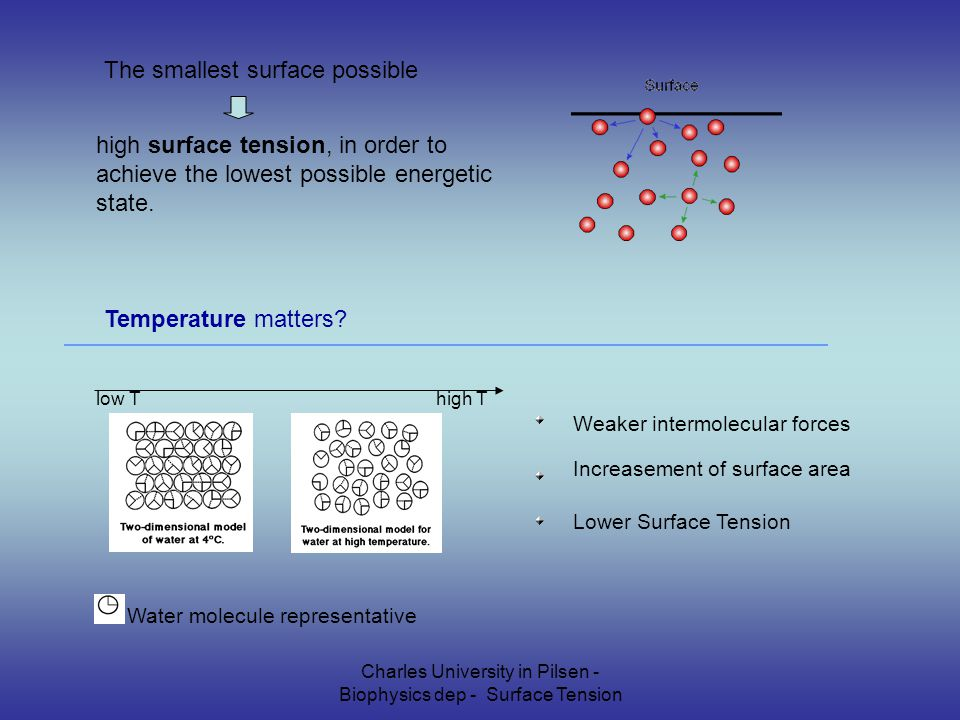 Charles University in Pilsen - Biophysics dep - Surface Tension The smallest surface possible high surface tension, in order to achieve the lowest possible energetic state.