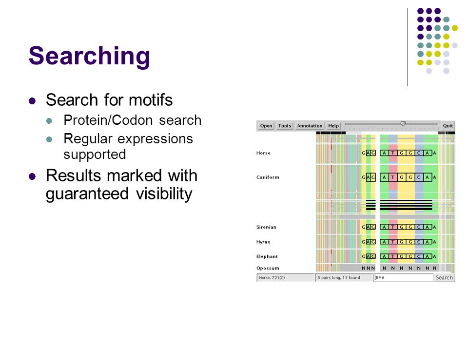 Searching Search for motifs Protein/Codon search Regular expressions supported Results marked with guaranteed visibility