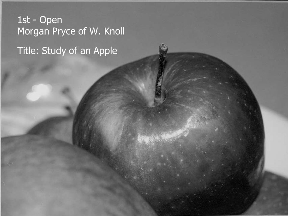1st - Open Morgan Pryce of W. Knoll Title: Study of an Apple