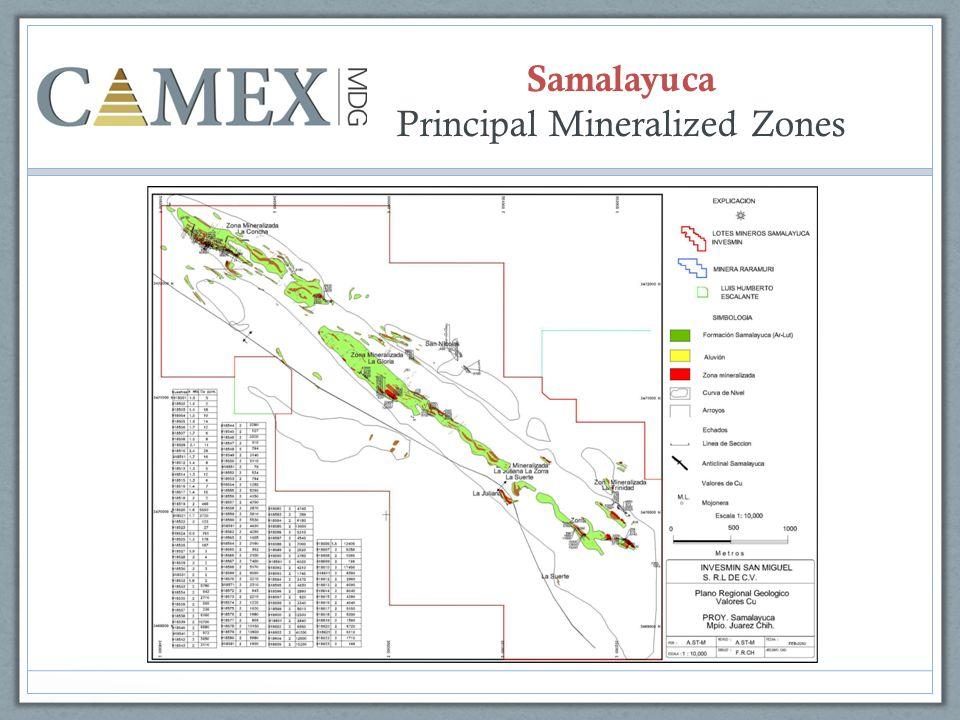 Samalayuca Principal Mineralized Zones