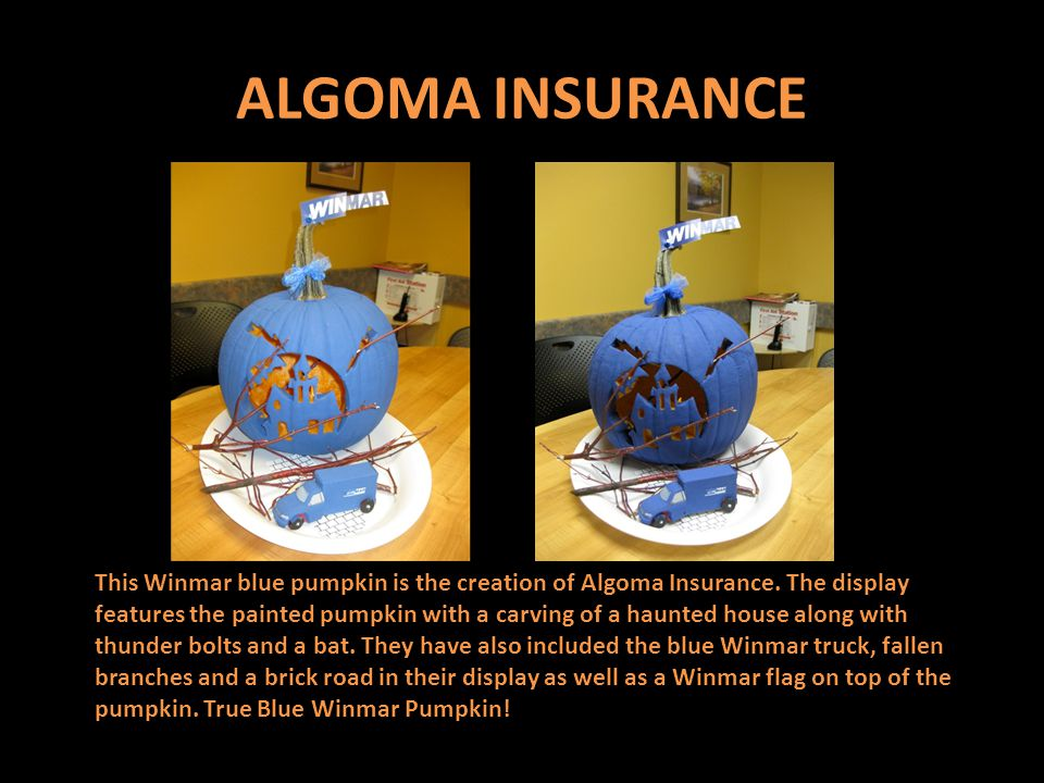 ALGOMA INSURANCE This Winmar blue pumpkin is the creation of Algoma Insurance.
