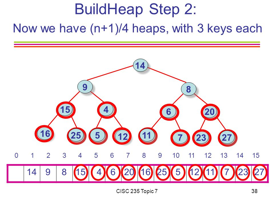 CISC 235 Topic 738 BuildHeap Step 2: Now we have (n+1)/4 heaps, with 3 keys each