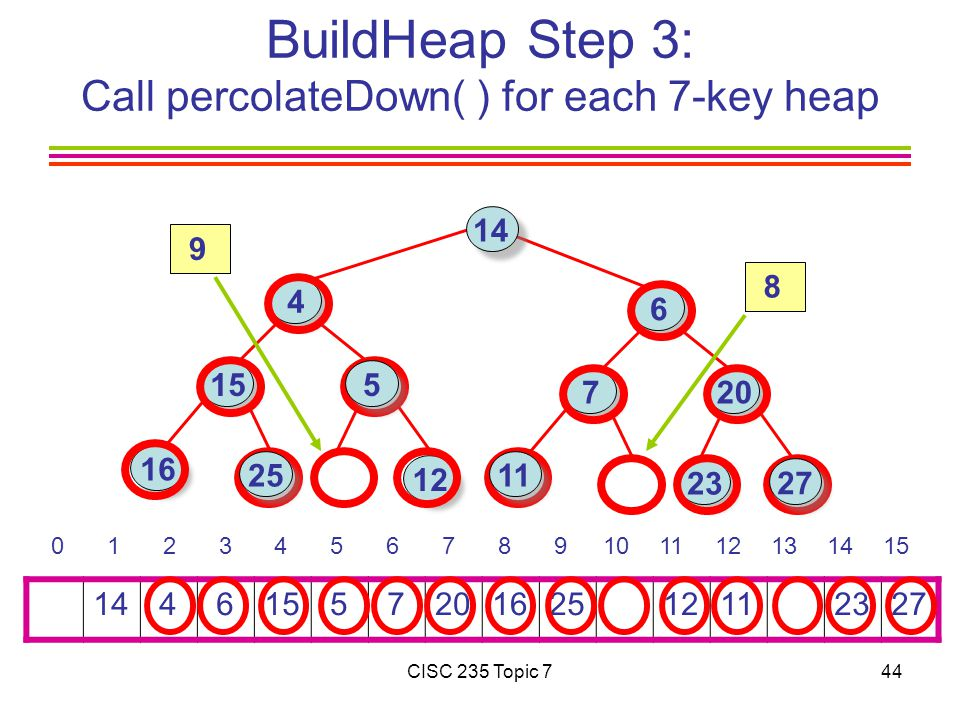 CISC 235 Topic 744 BuildHeap Step 3: Call percolateDown( ) for each 7-key heap