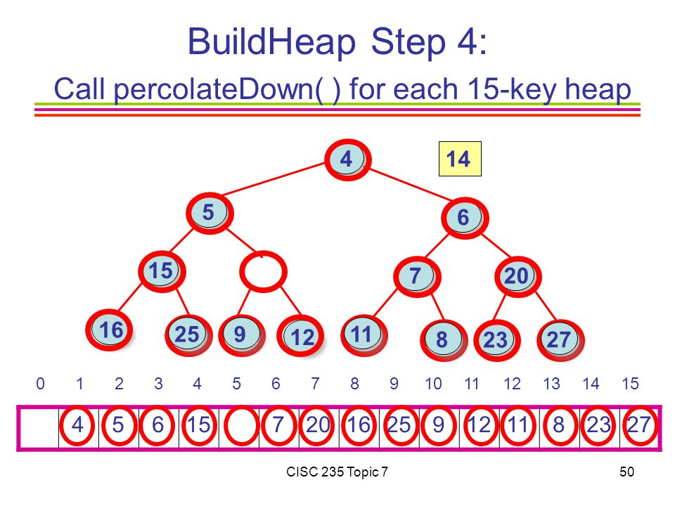 CISC 235 Topic 750 BuildHeap Step 4: Call percolateDown( ) for each 15-key heap