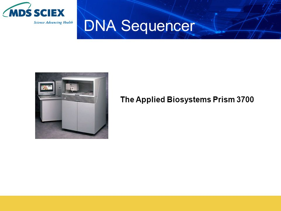 DNA Sequencer The Applied Biosystems Prism 3700