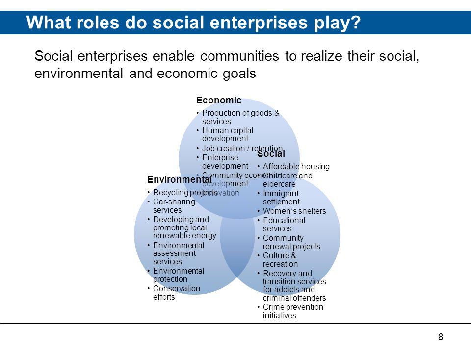 8 What roles do social enterprises play.