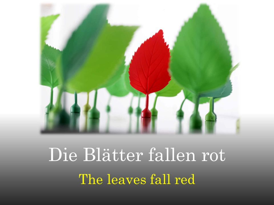 Die Blätter fallen rot The leaves fall red