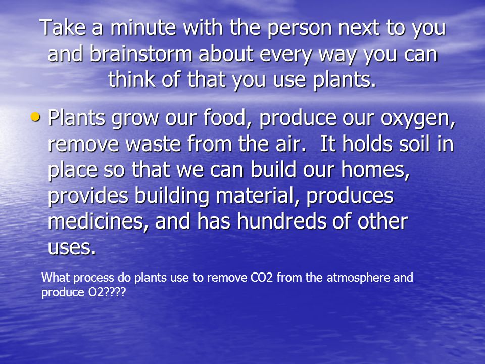 Plants for food and fibre.
