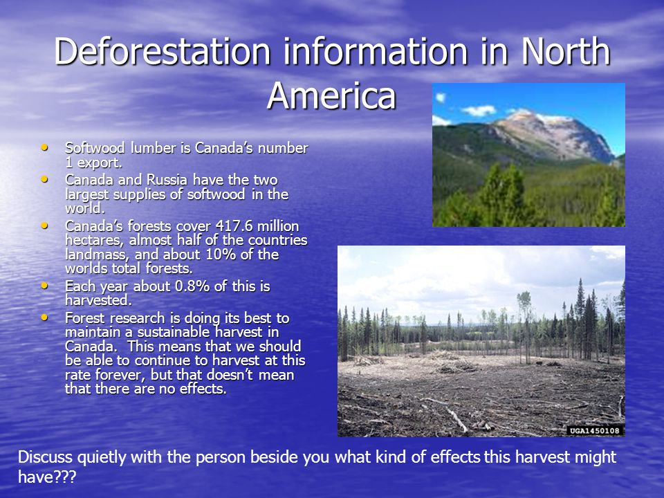 Deforestation information in North America Softwood lumber is Canada's number 1 export. Softwood lumber is Canada's number 1 export. Canada and Russia