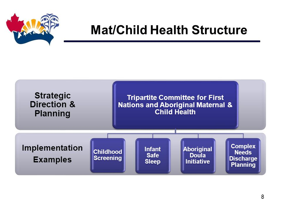 Mat/Child Health Structure 8 Implementation Examples Strategic Direction & Planning Tripartite Committee for First Nations and Aboriginal Maternal & C