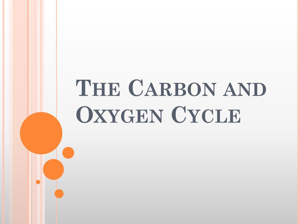 T HE C ARBON AND O XYGEN C YCLE