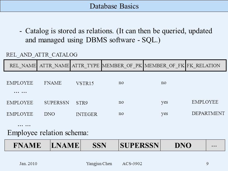 Database Basics Jan. 2010Yangjun Chen ACS-39029 -Catalog is stored as relations.