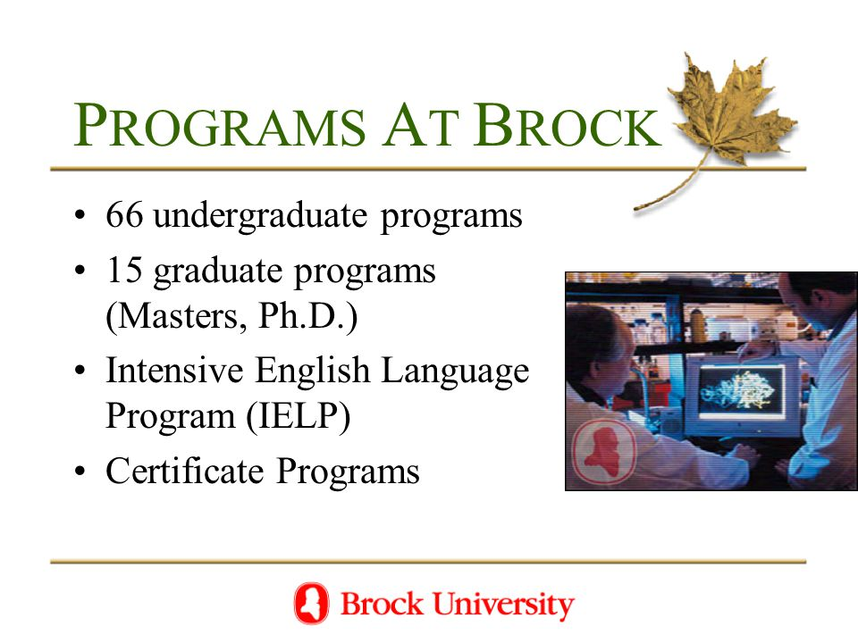 P ROGRAMS A T B ROCK 66 undergraduate programs 15 graduate programs (Masters, Ph.D.) Intensive English Language Program (IELP) Certificate Programs