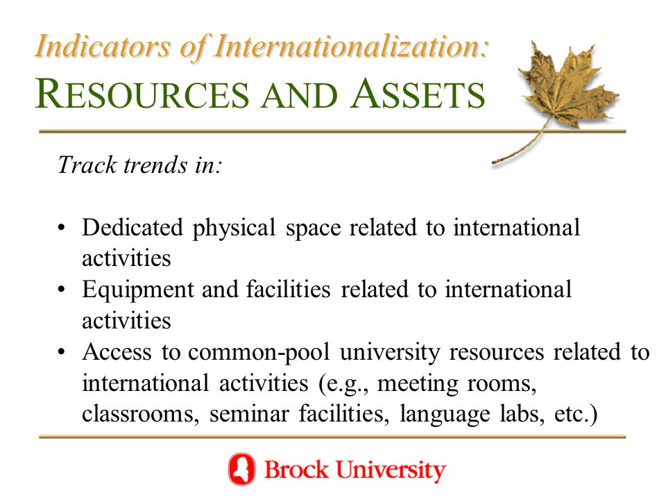 Indicators of Internationalization: Indicators of Internationalization: R ESOURCES AND A SSETS Track trends in: Dedicated physical space related to international activities Equipment and facilities related to international activities Access to common-pool university resources related to international activities (e.g., meeting rooms, classrooms, seminar facilities, language labs, etc.)