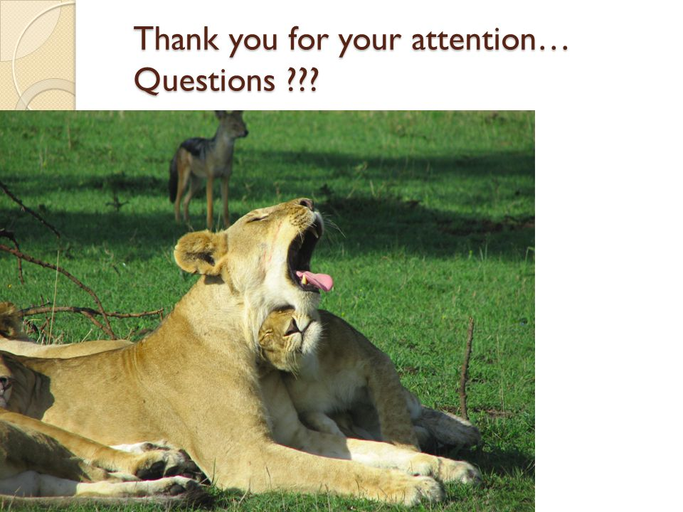 Thank you for your attention… Questions ???
