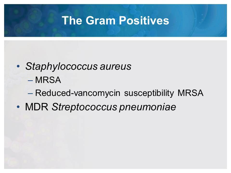 The Gram Positives Staphylococcus aureus –MRSA –Reduced-vancomycin susceptibility MRSA MDR Streptococcus pneumoniae