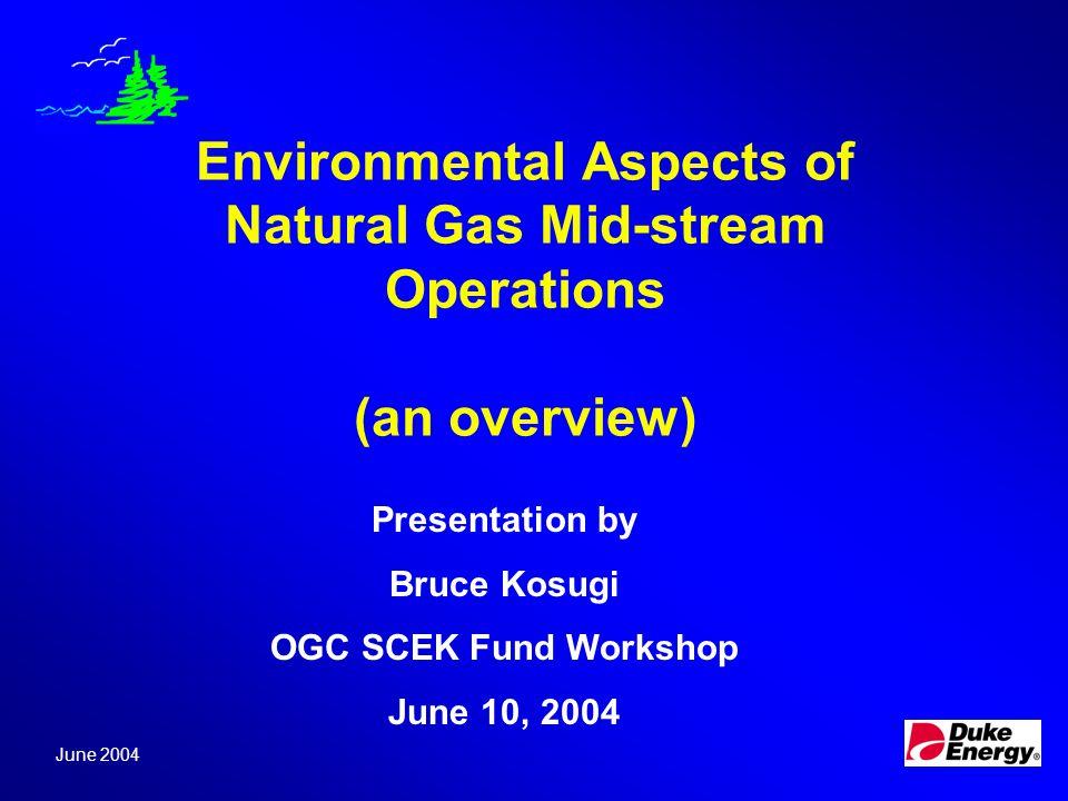 Air Acid Rain Ground Level Ozone/Smog Stratospheric Ozone Depletion Toxics Particulates Noise Greenhouse Gases