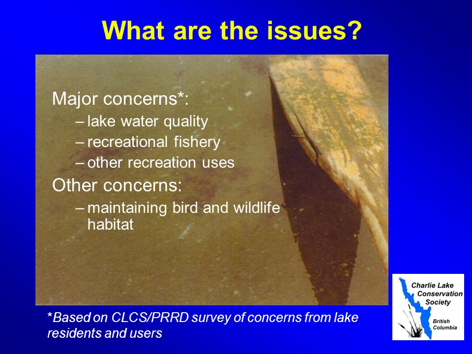 Strategic Environmental Plan Key Areas for improvement upgrading of poorly functioning stream crossings (primarily culverts that pass under roads) Preventing run-off from oil and gas sites, agricultural and lakeshore development sites reducing impacts from isolated septic systems.